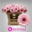 product/img.ozexport.nl/LGERMEVER-LIVE_fotos-0x813500EF90C58C62C0E6572FA0667D43D85B8D80.jpg