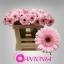 product/img.ozexport.nl/LGERMEVER-LIVE_fotos-0xE17E379C6095AC818033B4DF2CFC55F098297C07.jpg