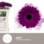 product/img.ozexport.nl/LGERMNAV-LIVE_fotos-0xF63904403FF3B91568B0313A6BEC2E9D9FAFF83B.jpg