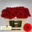 product/img.ozexport.nl/LGERMSUR-LIVE_fotos-0x44943B963E700CB9DCB2532E37B414E879F8FAD9.jpg