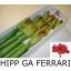 product/img.ozexport.nl/LHIPFER-LIVE_fotos-0x005B02774D7D1DF262D6FB0DF8A997EA783C4273.jpg