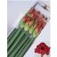 product/img.ozexport.nl/LHIPLILF-LIVE_fotos-0xCFC3E2B2A360571E8E8B477013774778B787704F.jpg