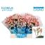 product/img.ozexport.nl/LHYPCOCAP4-LIVE_fotos-0x05D45D521537A75DA8F805025CD16BFD87731466.jpg