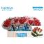 product/img.ozexport.nl/LHYPCOCT5-LIVE_fotos-0xACB47167F5767B8CF8B38B93B62313FFCF1447A2.jpg