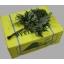 product/img.ozexport.nl/LLEAT-ASSORTI_fotos-gcon-GCON Blad ledervaren junior arachniodes.JPG