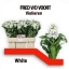 product/img.ozexport.nl/LLEVCENW-LIVE_fotos-0x7FE3C50C0A8789BD5C83688A79C26F1C7B86DDEB.jpg
