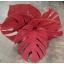 product/img.ozexport.nl/LMONLE45-ASSORTI_fotos-MVA-Vletter - blad monstera red velvet.jpg