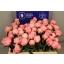 product/img.ozexport.nl/LPOJSARB5-LIVE_fotos-0xA91E78F5166D8DAF0A7A0D63A8AC29C4FA079514.jpg