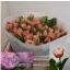 product/img.ozexport.nl/LTULQUE-LIVE_fotos-0x2DCE0878B4B6DF6D433D78930C6D84C9638BAE27.jpg