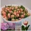 product/img.ozexport.nl/LTULQUE-LIVE_fotos-0x42CD8E0CE3E38EB0BB497B912F253D5FAA4576B8.jpg