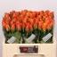 product/img.ozexport.nl/RCON5-LIVE_fotos-0x1CBB43E320B8D49C630BA6B289A8D1CCAF4F1D7F.jpg