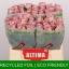 product/img.ozexport.nl/RMEM4-LIVE_fotos-0x52F770D6D4F1CCB6415974170A7718EBE9BD8F94.jpg