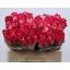 product/img.ozexport.nl/RNIC5-LIVE_fotos-0xD474682A3817A8F0375294DE4E808124FD21DEF0.jpg