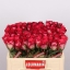 product/img.ozexport.nl/RNIC5-LIVE_fotos-0xDE5C47232F31820605C6C80AACD7B7C22756522C.jpg