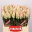 product/img.ozexport.nl/RPATH4-LIVE_fotos-0x275608AEA527CC8154BB41233B3537F2F24C3603.jpg