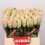 product/img.ozexport.nl/RPATH4-LIVE_fotos-0x318969F3E8348B1E6A9F052DD662C937C946819B.jpg