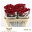 product/img.ozexport.nl/RRED7-LIVE_fotos-0x5FD54E996BCFA0205CA94405DD410374895342D1.jpg