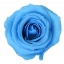 RME3640-01-rosa-medium.jpg