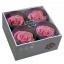 RSG2480-03-rosa-premium.jpg