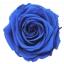 RSG2630-01-rosa-premium.jpg